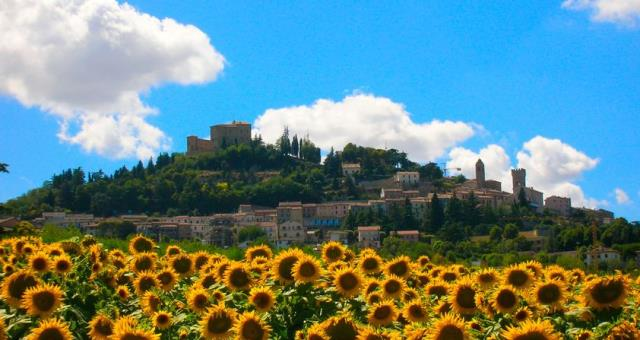 Bertinoro, Best Western Hotel Globus City